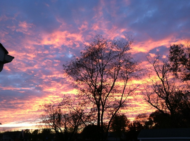 Seen on my run last week. This sunset will cure what ails you.