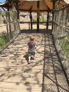 "He ran up this ""wobbly bridge"" roughly 10 times"